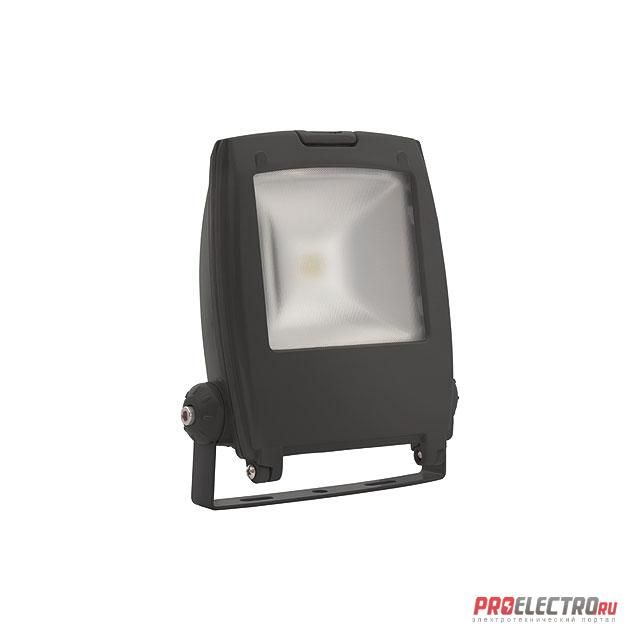 <strong>Kanlux</strong> RINDO LED MCOB-10-GM (18480) Прожектор LED MCOB