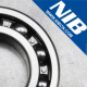 Shandong NIB Bearing Co.,Ltd.